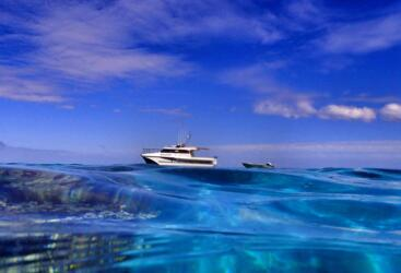 1770 Fishing Tours - Private Charter Snorkel Tours