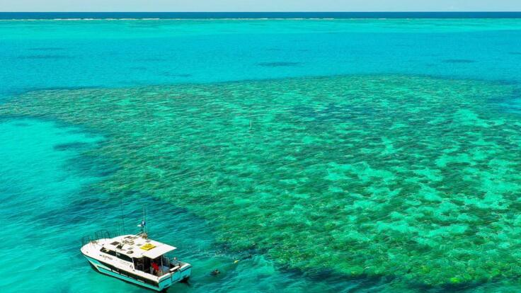 Seventeen Seventy Boat Charter Tours - Snorkel the reef- fish the reef
