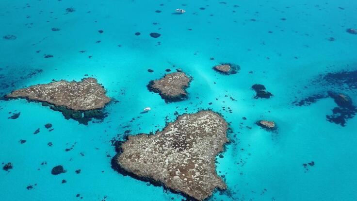 1770 Great Barrier Reef Fishing Charters  - Aerial View of the Lagoon