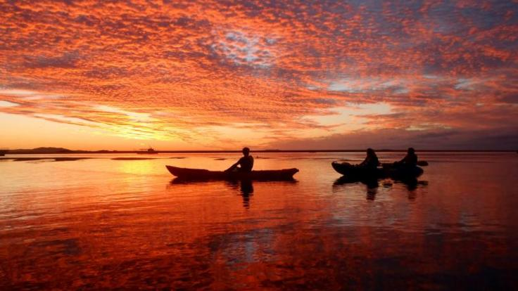 1770 sunset kayak tours - an experience to remember
