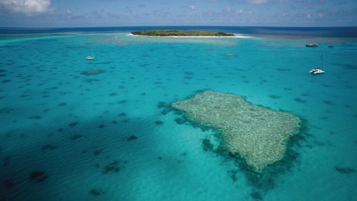 Aerial View Lady Musgrave Island Lagoon
