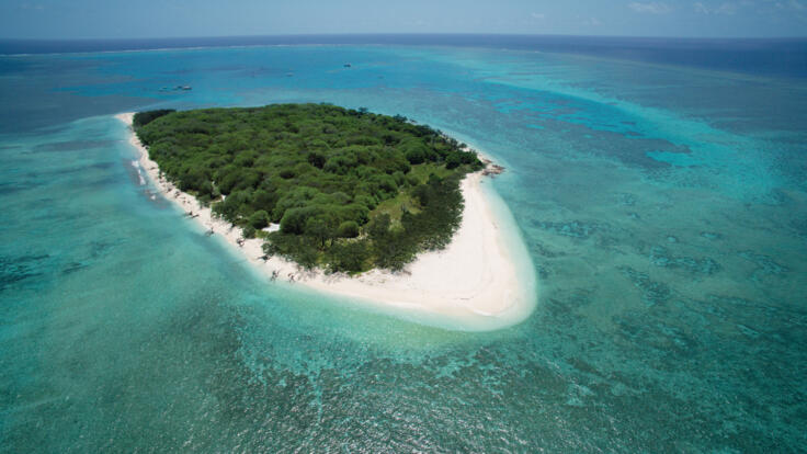 Lady Musgrave Island Tours - Aerial View