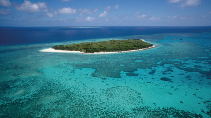 Lady Musgrave Island Snorkel Tours - Aerial View