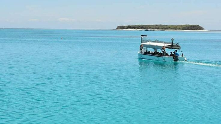 Lady Musgrave Island - Glass Bottom Boat Tours