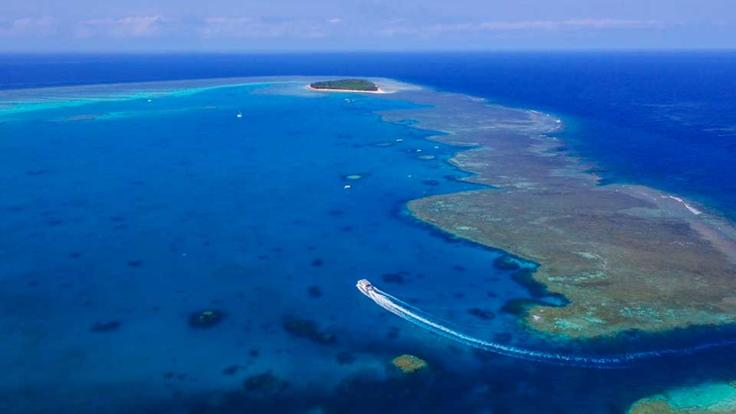 Aerial view of Lady Musgrave Island | Southern Great Barrier Reef Tours