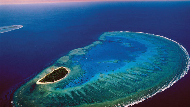 Aerial shot of Lady Musgrave Island and surrounding reef