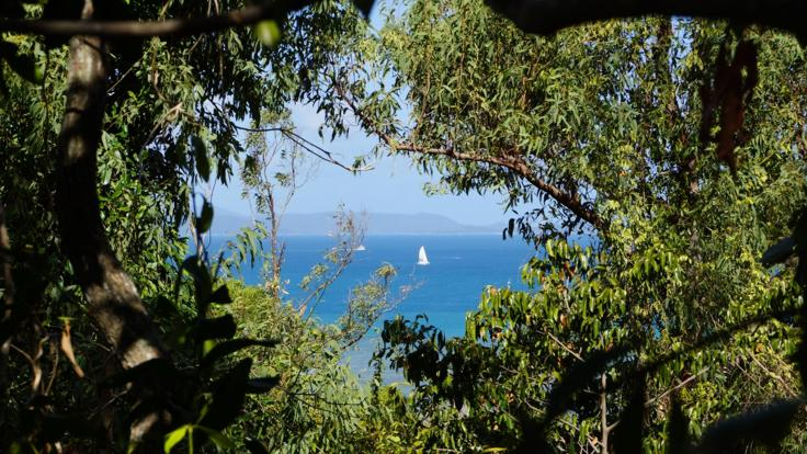 Lookout | Half Day Airlie Beach Tour