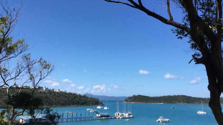 Shute Harbour Looking | Airlie Beach Walking Tour