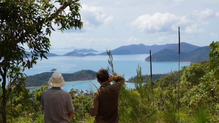 Mt Rooper | Airlie Beach Half Day Waking Tour