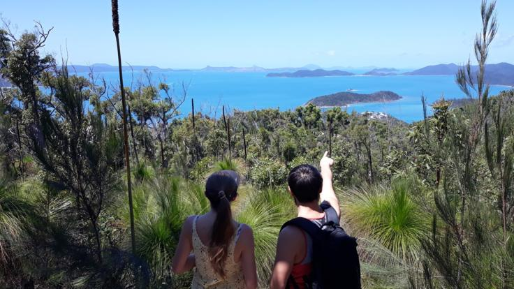 Stunning Views | Airlie Beach Half Day Walking Tour