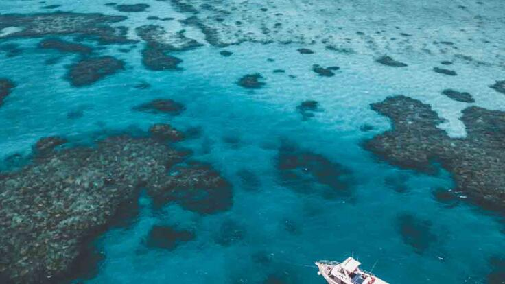 Townsville Dive Tours - Townsville Snorkel Tours - Aerial View of Boat