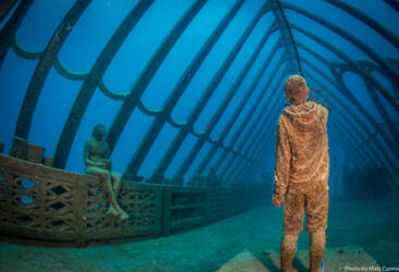Museum of Underwater ART Tour - Snorkel and dive directly from the boat