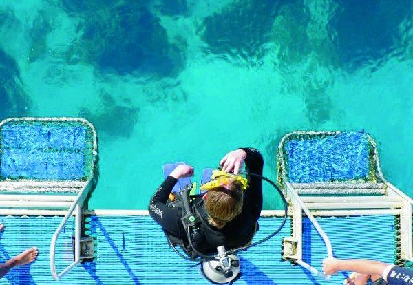 Step into the Great Barrier Reef off Townsville