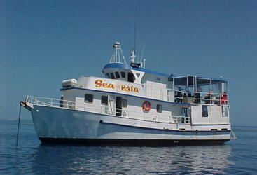Scuba Dive Tours Townsville - Liveaboard dive tour from Townsville