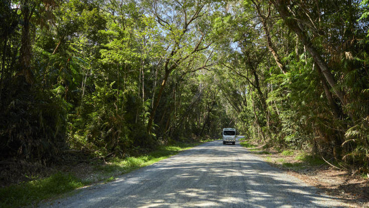 Visit Cooktown From Cairns | Bloomfield Track