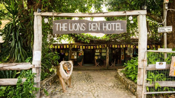 Cooktown Wanderer 4WD Tour | Iconic Lions Den Hotel