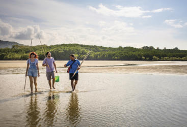 1 Day Daintree Dreaming Tour Departing Cairns
