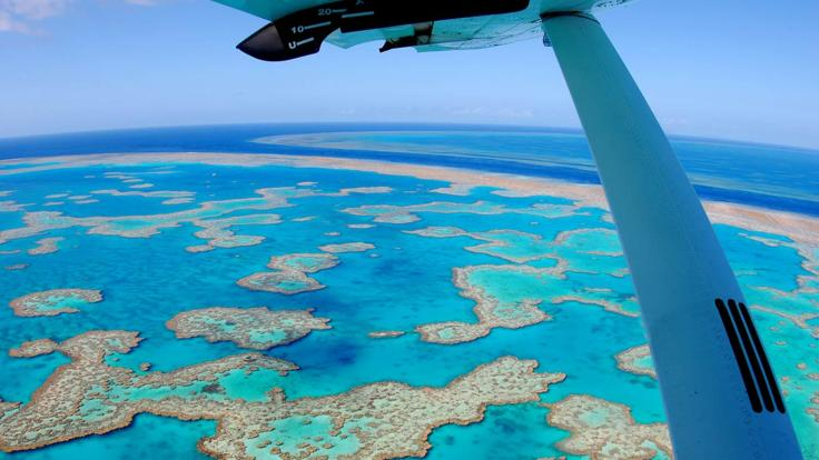Seaplane flights over the Great Barrier Reef from Airlie Beach