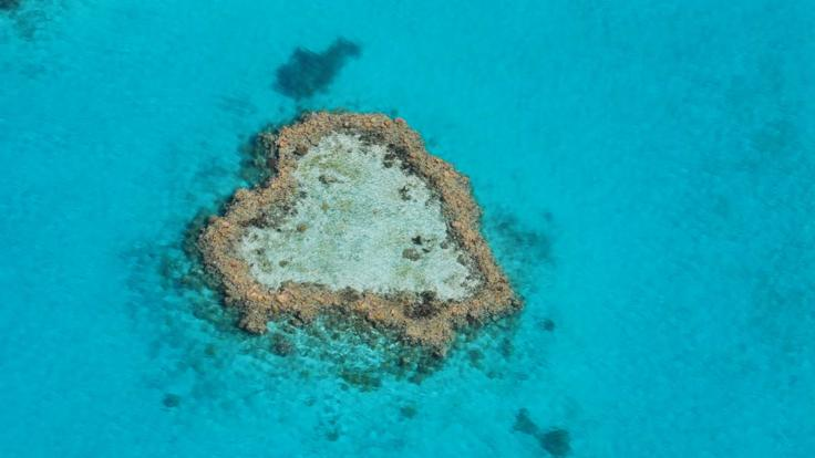 Whitsunday Seaplane Flight over Heart Reef