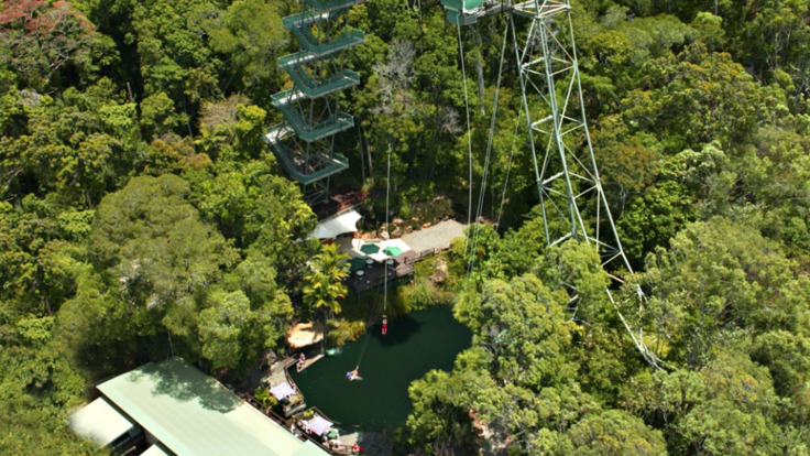 50 metre bungy tower in the rainforest