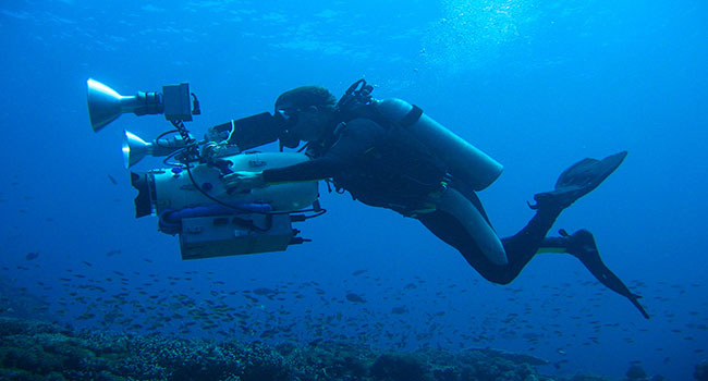 Dive and Film Charters - Great Barrier Reef Expeditions