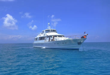 Private boat charter from Port Douglas - Great Barrier Reef - Australia