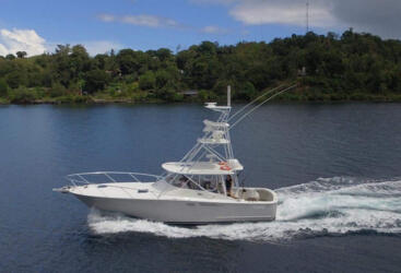 Luxury Charter Boat Port Douglas - Cruising