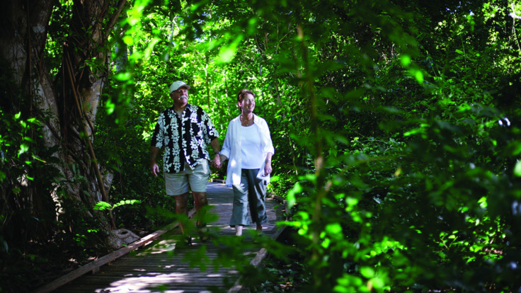 Green Island Tour - Rainforest boardwalk on Green Island, Tropical North Queensland