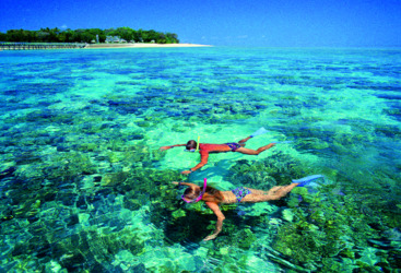 Snorkelling at Green Island, Great Barrier Reef