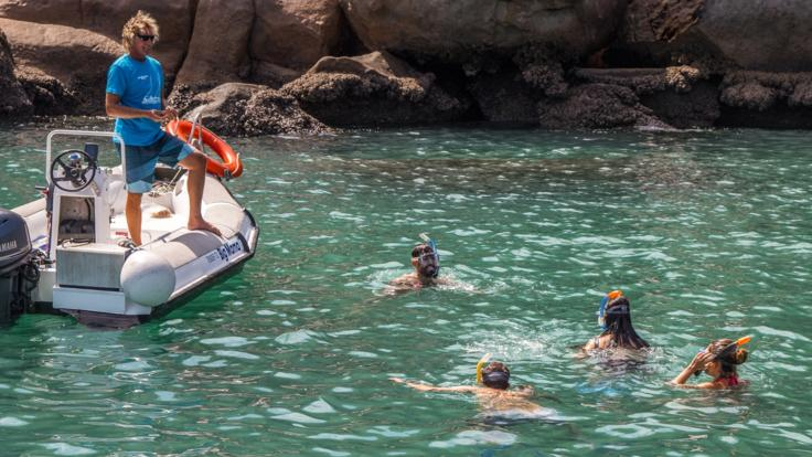 Snorkel and swim in private bays around Magnetic Island