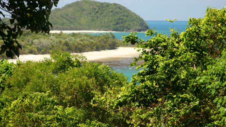 Views from Rainforest to the sea at Cape Tribulation