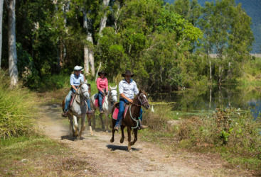 Cairns horse ride tours