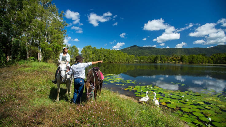 Enjoy picturesque views as we ride around the billabong wetlands on our horse riding tour in Cairns