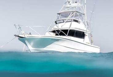 Cairns Private Charter Boat - Snorkel and Fishing Tours