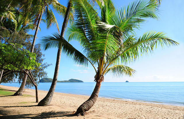 Visit Palm Cove Village located north of Cairns
