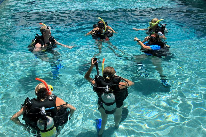Training pool - training to dive the Great Barrier Reef