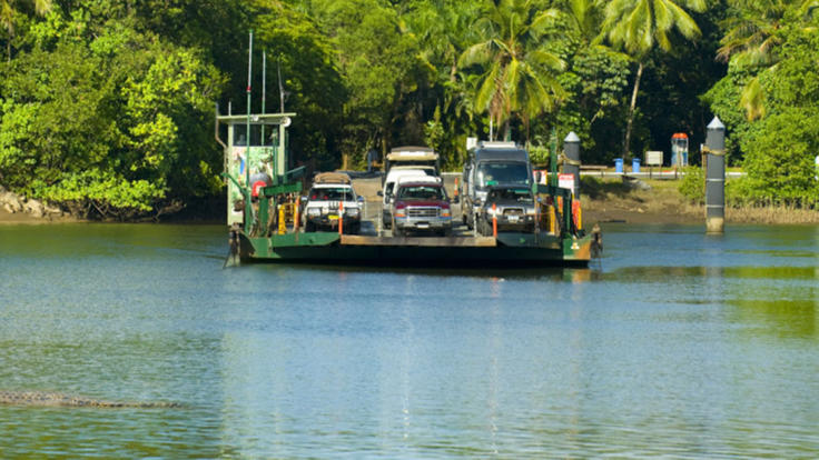 Daintree River Crossing | Cairns To Cooktown Full Day Experience