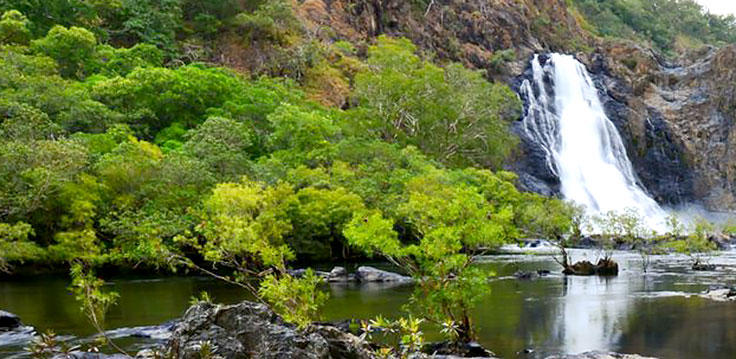 Stop Over To Stretch Your Legs at Wujal Wujal Falls | 1 Day Cairns To Cooktown Trip
