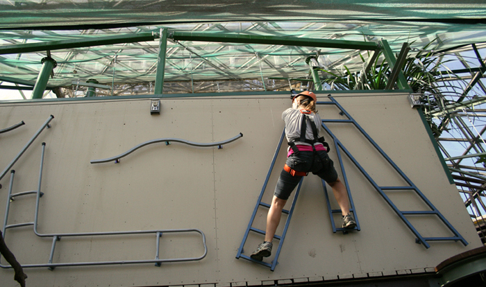 Fun for all ages with the dome climb in Cairns