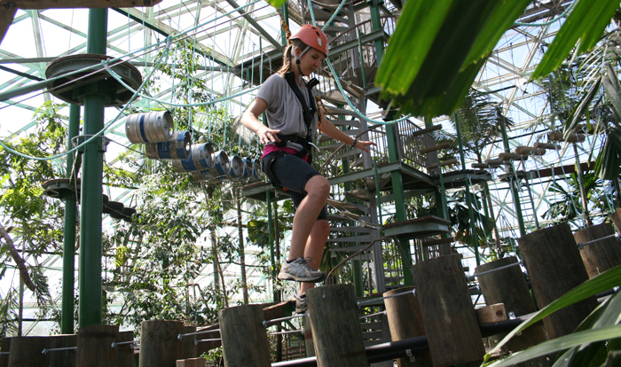 Zipline over the animals in the Cairns Dome