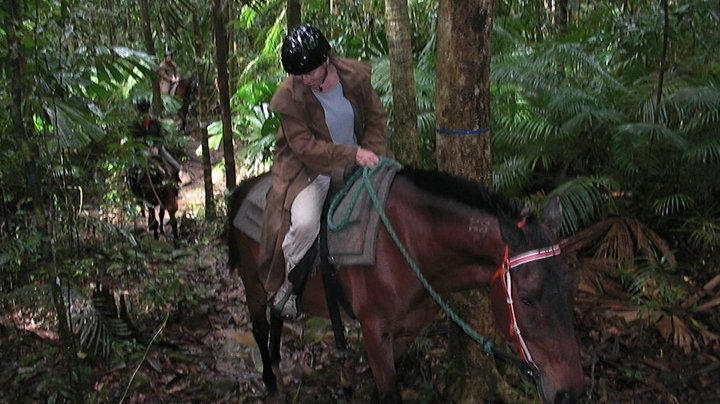 horseback ride thru the rainforest