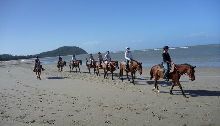 Horseback ride along the beach Cape Tribulation