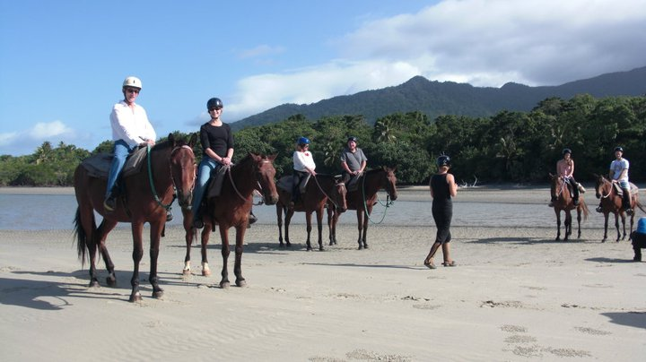 Make new friends on your horse ride in Cape Tribulation