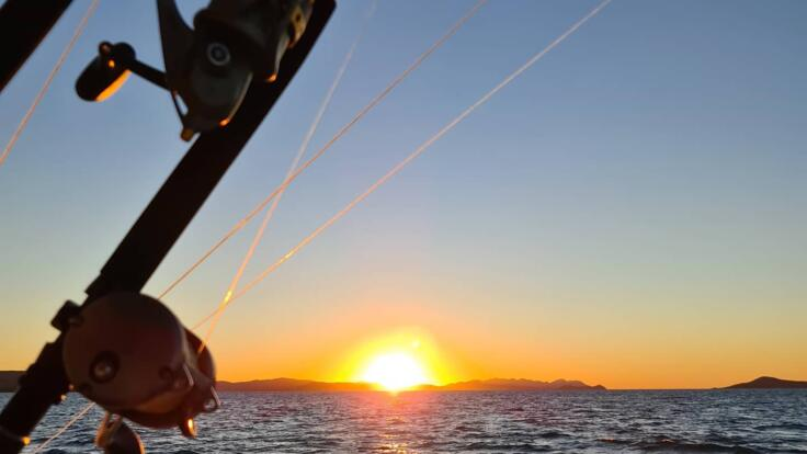 Fishing Charters Whitsundays - Airlie Beach