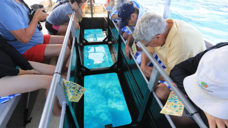 Even non-swimmers can see the Great Barrier Reef on a glass bottom boat tour