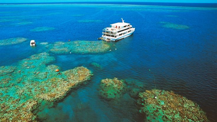 Dive and snorkel the Great Barrier Reef from our Cruise Ship
