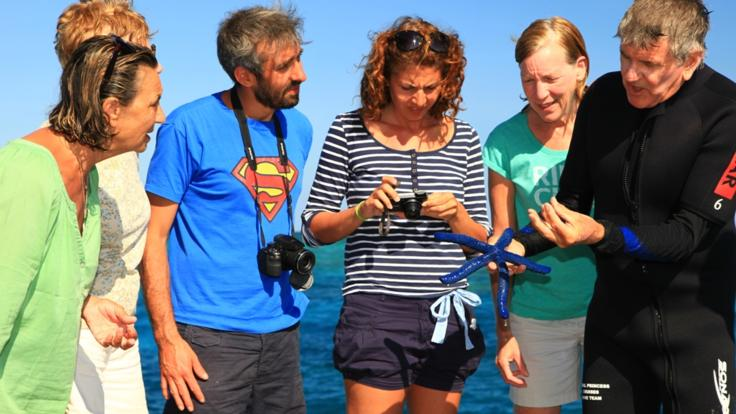 Take island and beach walks with our Marine Biologists