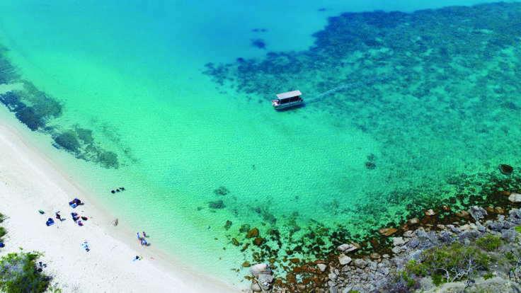 Barrier Reef Australia: Glass bottom boat available