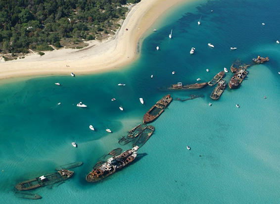 Visit the Tangalooma Wrecks at Moreton Island