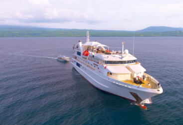 Cruises Great Barrier Reef Australia - Cruise Ship Underway